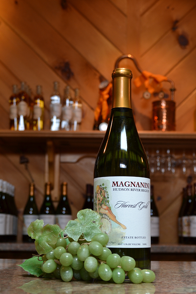 Harvest Gold Wine - Magnanini Winery - Hudson Valley Winery & Vineyard