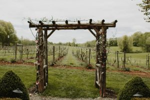 The Vineyard at Magnanini Winery - Hudson Valley Winery & Vineyard